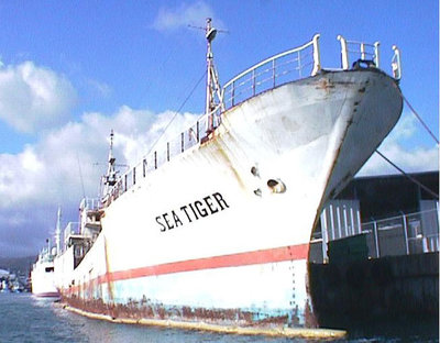 sea-tiger-shipwreck-01.jpg