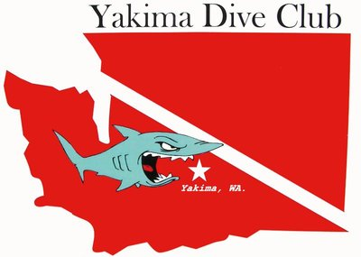 ydc shark logo 2 update A_resized.jpg