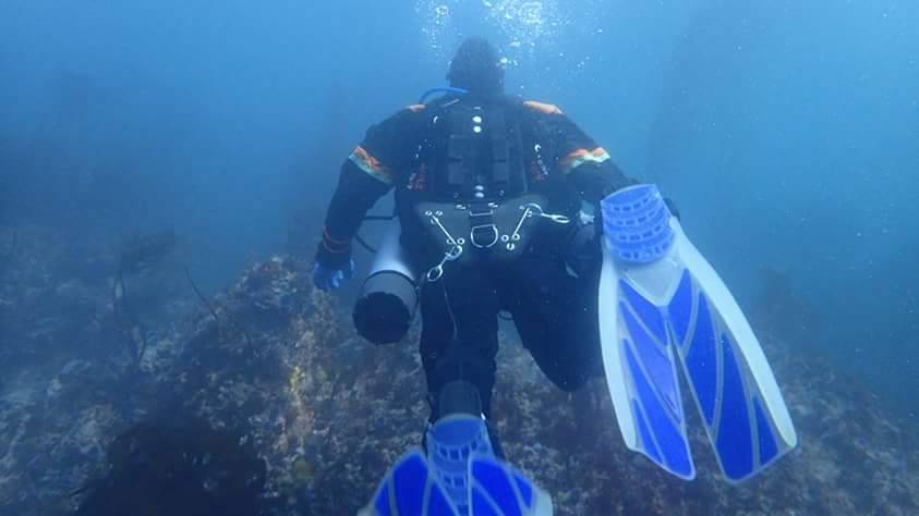 uploadfromtaptalk1459551785857.jpg