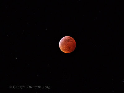 Super Blood Wolf Moon 2.jpg