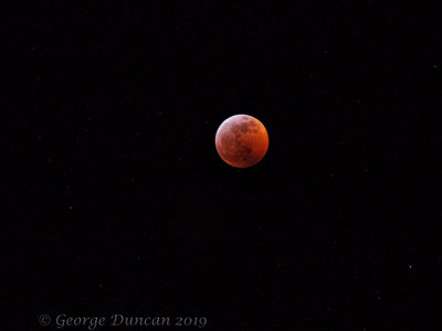 Super Blood Wolf Moon 3.jpg